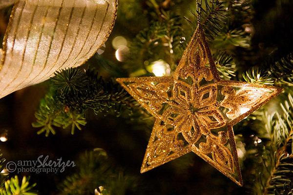 A star ornament glows on a lovely green Christmas tree.